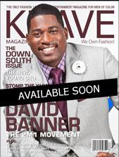 David Banner Kover